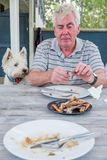 West highland terrier westie dog watching retired man pick at bo. West highland terrier westie dog watching retired caucasian man pick at bones after meal royalty free stock image