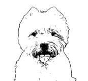 West Highland White terrier drawing Stock Photos