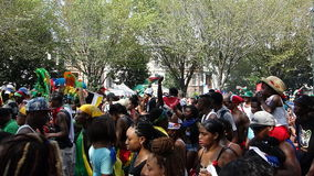 The 2014 West Indian Day Parade 67 Royalty Free Stock Photo