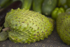West Indian Soursop Royalty Free Stock Photo