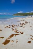 West Indies, Caribbean, Antigua, St Georges, Dickenson Bay, Beach Stock Images