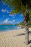 West Indies, Caribbean, Antigua, St Johns, Galley Bay & Beach Stock Photography