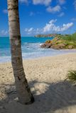 West Indies, Caribbean, Antigua, St Johns, Galley Bay & Beach Royalty Free Stock Photo