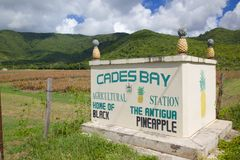 West Indies, Caribbean, Antigua, St Mary, Cades Bay, Antigua Black Pineapple Sign Royalty Free Stock Photography