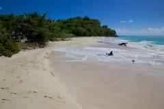 West Indies, Caribbean, Antigua, St Mary, Ffryes Beach Stock Photos