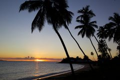 West Indies, Caribbean, Antigua, St Mary, Morris Bay, Palm Trees & Beach at Sunset Stock Photo