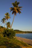 West Indies, Caribbean, Antigua, St May, Morris Bay, Beach at Sunset Royalty Free Stock Image