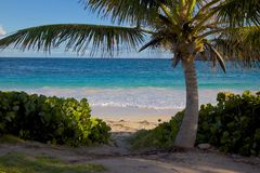 West Indies, Caribbean, Antigua, St Philip, Half Moon Bay Stock Image