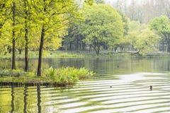 West internal lake Stock Image