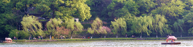 West lake bai causeway spring willow green, peach red, and attraction. Stock Photography