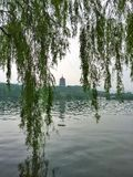 West lake in china Stock Photo