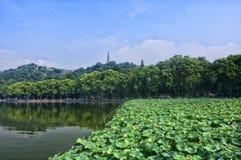 West Lake Hangzhou Stock Image