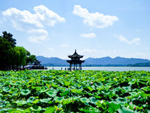 West Lake of Hangzhou pavilion. A pavilion near lotus pond in West Lake Cultural Landscape in Hangzhou city Zhejiang province China royalty free stock image