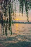 West Lake and hills under sunset through willow branches, in Hangzhou, China royalty free stock photography