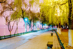 West lake Scenic area at night Stock Image