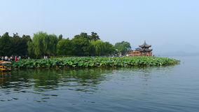 West lake in summer Royalty Free Stock Images