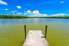 West Lake Trailhead of the Everglades National Park. Boardwalks in the swamp. Florida, USA royalty free stock photos