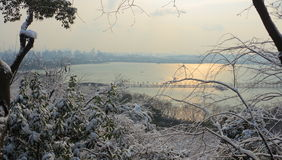 West Lake(xihu) in Hangzhou of China in winter after the snow when sun rises Royalty Free Stock Images