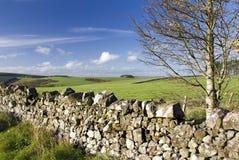West Lothian, Scotland, autumn. Stone wall Stock Photos