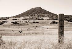West-Mesa Grazing Range und ein Cowboy Open Space stockbild