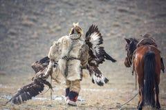 West-Mongolei, goldener Eagle Festival Der mongolische Nomade trägt zwei Golden Eagles in seinen Händen nach dem ` Fox-Haut ` Wet stockbild
