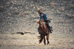West-Mongolei, goldener Eagle Festival Mongolian Rider-Hunter In Blue Clothes And ein Pelz-Hut auf Brown-Pferd und das Fliegen go Lizenzfreies Stockbild