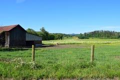 West-NC-Gebirgsbauernhof, -feld und -weide Stockfotografie