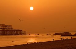 West Pier Brighton. Burned down West Pier in Brighton (UK, England) at sunset Stock Image