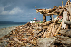 West Point Lighthouse and driftwood beach structure Royalty Free Stock Image