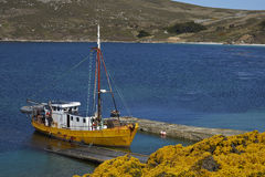 West Point Settlement in the Falkland Islands Stock Images
