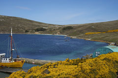 West Point Settlement in the Falkland Islands Royalty Free Stock Image