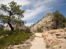 West Rim Trail Royalty Free Stock Image