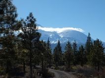 The west side of Mt Shasta stock photos