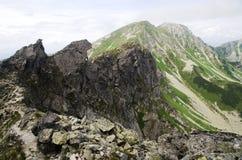 West-Tatra Berge Rohace, Slowakei Stockfotografie