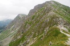 West-Tatra Berge Rohace, Slowakei Lizenzfreie Stockfotografie