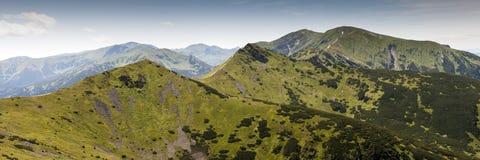 West-Tatras-Gebirgslandschaft Lizenzfreies Stockbild