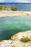 West Thumb Geyser Basin Royalty Free Stock Photo