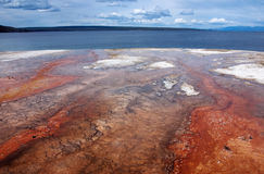 West Thumb Geyser Basin Royalty Free Stock Images