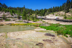 West Thumb in Yellowstone National Park , USA Royalty Free Stock Image