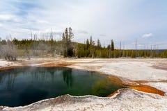 West Thumb, Yellowstone, Wyoming, USA royalty free stock image
