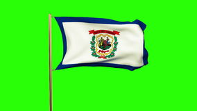 West virginia flag waving in the wind. Green stock video footage