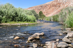 West Walker River in Wilson Canyon. The West Walker River in Wilson Canyon, Western Nevada Stock Photos