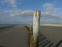 West Wittering pilings, Sussex, UK. Royalty Free Stock Photography