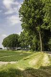 West Zeeuws Flanders, The Netherlands. Royalty Free Stock Image