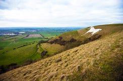 Westbury白马小山在威尔特郡,南英国 库存照片