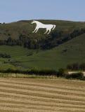 Westbury Biały koń Zdjęcia Royalty Free