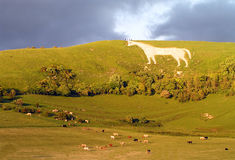 Westbury White Horse. In Wiltshire England stock images