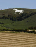 Westbury White horse Royalty Free Stock Photos