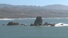 Westcoast, California, United States stock video footage