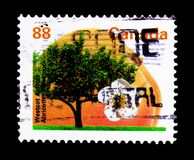 Westcot杏子, Definitives 1991-96 :果子和坚果树serie, 免版税库存照片